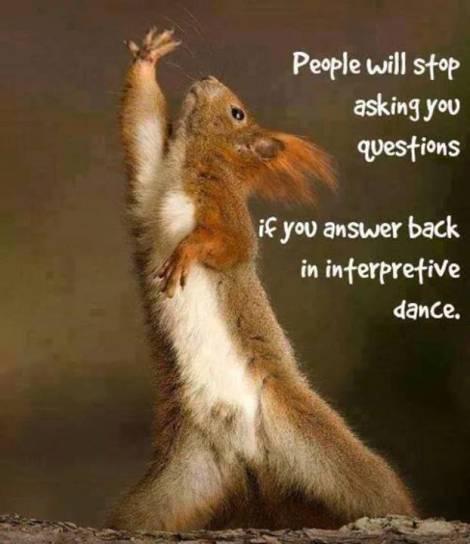 funny squirrel, interpretive dance
