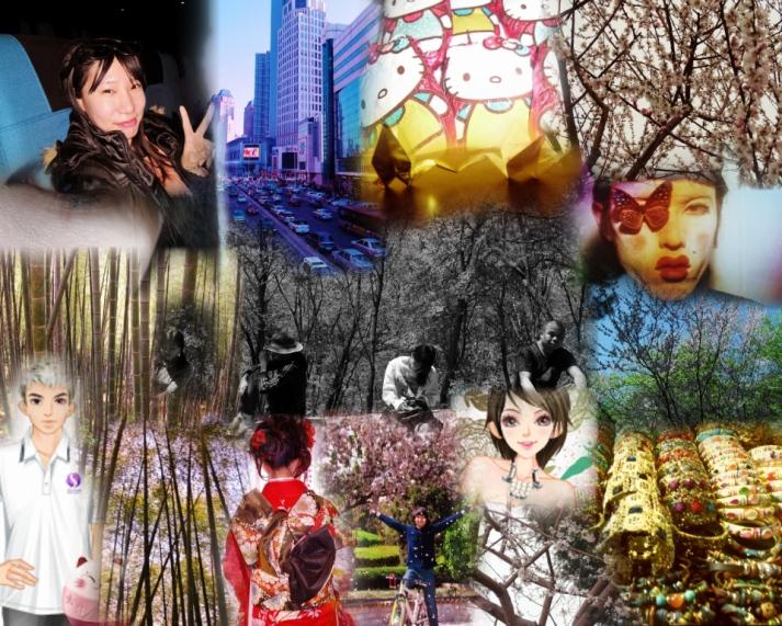 SAM_1617 Collage