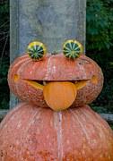 pumpkin-473921__180