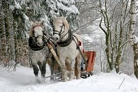 sleigh-ride-549727__180