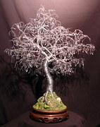 bonsai-18595__180