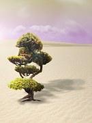 bonsai-600105__180