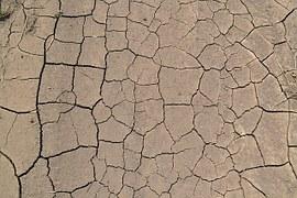 desert-272489__180