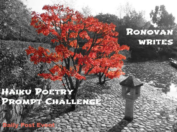 haiku-challenge-image