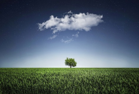 Image of cloud and tree, pixabay