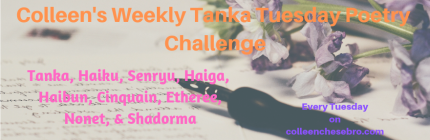 colleens-weekly-tanka-tuesday-poetry-challenge