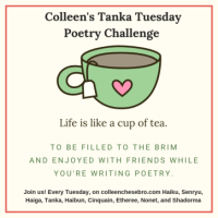 Colleen's 2019 Weekly #Tanka Tuesday #Poetry Challenge No. 137 #SynonymsOnly