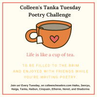 Colleen's Tanka Tuesday #TankaTuesday #Poetry