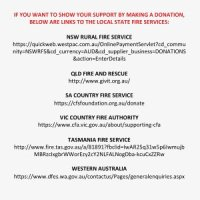 The Australian Fires: Where You Can Donate