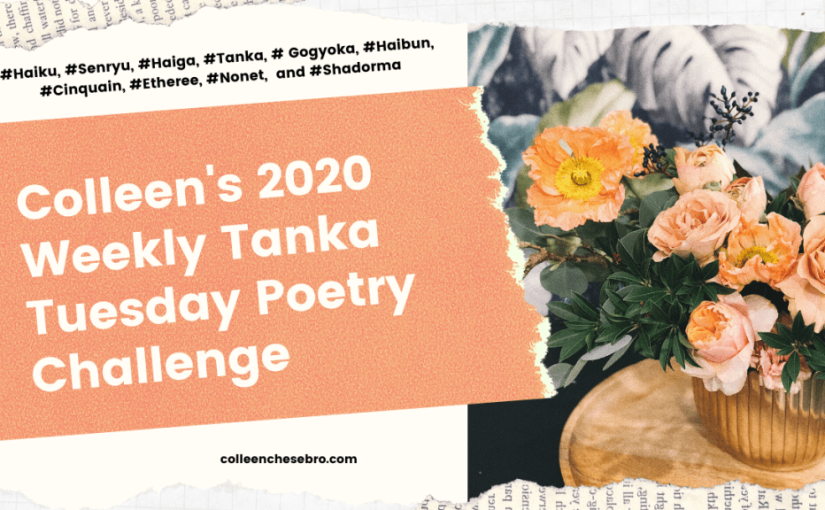 Colleen's 2020 Weekly #Tanka Tuesday #Poetry Challenge No. 177 #SynonymsOnly