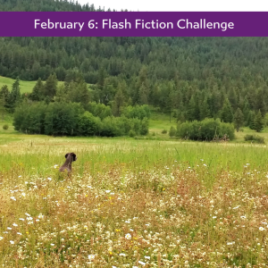 February 6: Flash Fiction Challenge Carrot Ranch