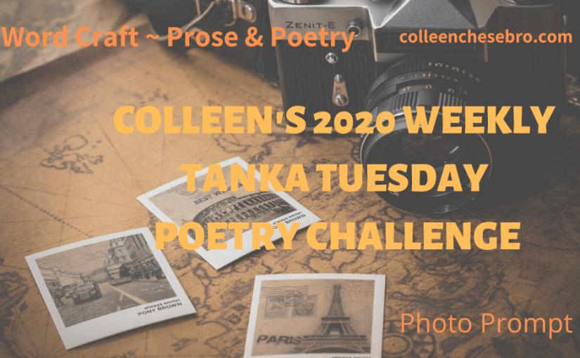 Colleen's 2020 Weekly #Tanka Tuesday #Poetry Challenge No. 174 #PhotoPrompt #Haiga #Haiku #Tree#Nature